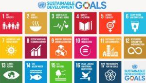 SDG pic